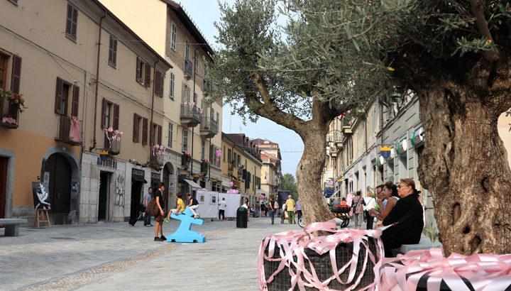 Affitto Mansarda Torino zona Gran Madre