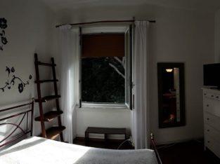 Splendida Camera Singola Nemorense Trieste