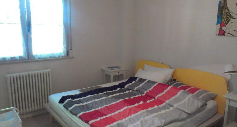 Singola o doppia in bell'appartamento studenti