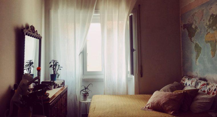 Affitto Roma Prati grande camera singola zona Prati metro A