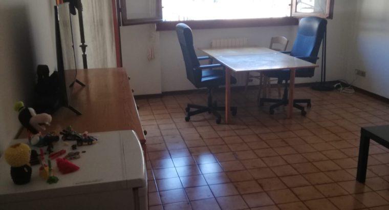 Affittasi camera doppia per studenti