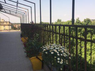 Camera in appartamento zona Ospedale-Parco Ducale- Università parma