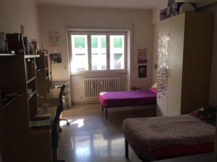 Roma Affitto posto letto in stanza doppia (San Paolo – Roma)